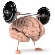 Лучшие препараты для улучшения работы и продуктивности мозга.