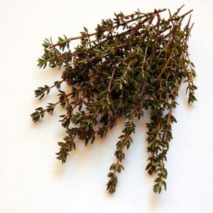 сухую траву чабрец